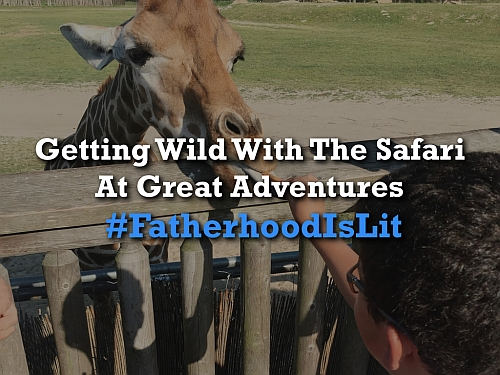 #FatherhoodIsLit Safari At Great Adventures