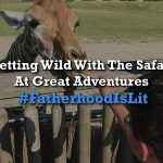 #FatherhoodIsLit Safari At Great Adventures